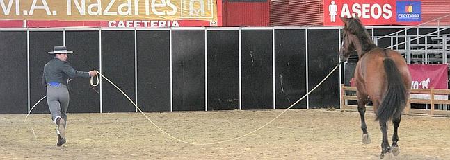 Feria del Caballo de Granada