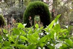 Visita al Jardín Botánico de Granada